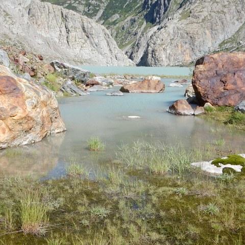 Gletschervorfeld TRift. Vergrösserte Ansicht