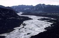 Der italienische Alpenfluss Tagliamento/Friaul.