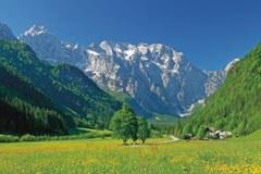 Logartal: Ökonomischer Naturschutz?