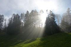 50 Jahre Naturparks in Österreich