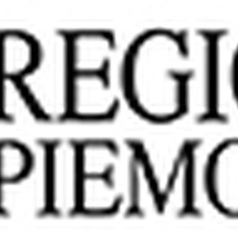 logo_regionepiemonte.jpg, enlarged picture.