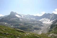 """Des associations de protection de l'environnement exigent la protection des """" friches alpines """"."""