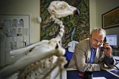 Le directeur du Parc national de Berchtesgaden, Michael Vogel, s'engage pour la mise en réseau des animaux, des végétaux et des personnes dans les Alpes.