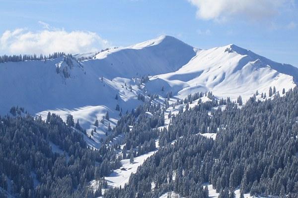 Une «zone de tranquillité» est menacéepar un projet de construction de remontées et de pistes de ski sur le Riedberger Horn dans l'Allgäu. © DAV