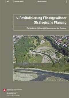 Cover Revitalisierung Fliessgewässer: Strategische Planung