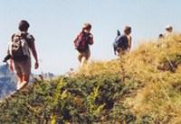 La Via Alpina comprende cinque itinerari escursionistici di lunga percorrenza.