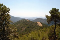Parco nazionale del Gennargentu e del Golfo di Orosei in Sardegna/I: la riorganizzazione degli enti pubblici riguarda anche i parchi nazionali.