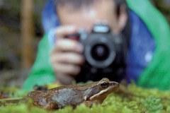 Impegno per la biodiversità: l'Internazionale degli Amici della natura invita a un concorso fotografico
