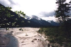 Lech - questo importante ambiente fluviale è minacciato dall'ampliamento della centrale idroelettrica di Spullersee