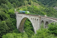 Chi risiede in Provincia di Bolzano/I o in Trentino/I potrà utilizzare gratuitamente tutti i mezzi pubblici della provincia vicina, a condizione di giungere con un mezzo pubblico.