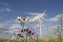 Premio Arge-Alp: sole, vento o biomasse - l'importante è che siano fonti rinnovabili.