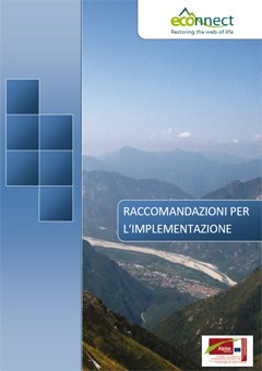 Raccomandazioni per l'implementazione