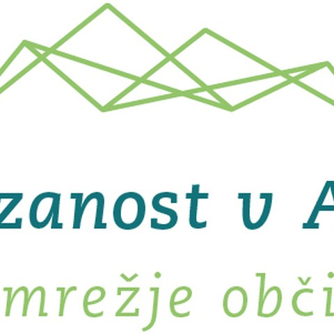 aida-logo-sl.jpg, enlarged picture.