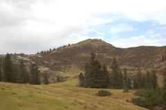 Razširitev smučišč bi se morala izvesti preko območja, ki je izrednega pomena kot zatočišče za divjega petelina.
