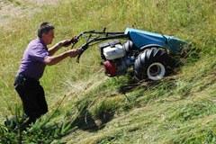 Kmetijski paket 2010: finančne spodbude za švicarske gorske kmete.