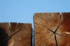 Les je tisti obnovljivi vir energije v Alpah, ki je vsestransko uporaben, omogoča visoko dodano vrednost in je skoraj povsod dostopen.