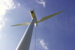 Ne le simbolov, postaviti je treba tudi merila - WWF z akcijo Ura Zemlje poziva k uporabi zelene električne energije.