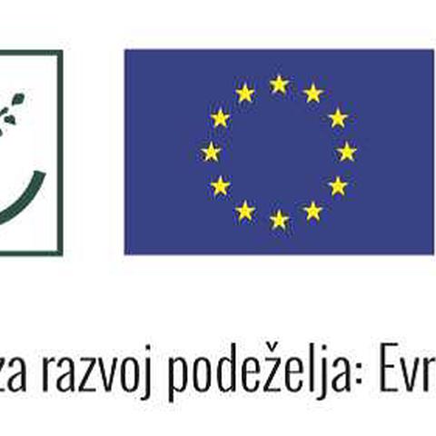 Smer TNP_logo-noga.png, enlarged picture.