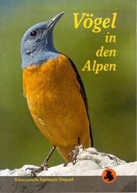 Ptice v Alpah